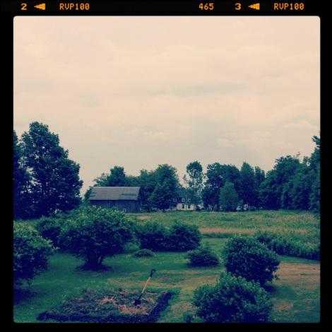 PLMT View