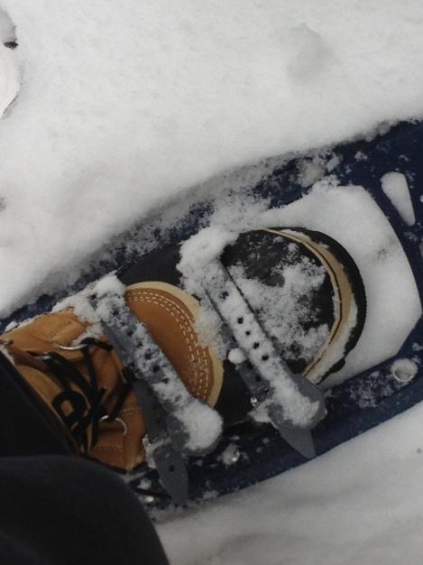 Snow Shoe, Lake Placid