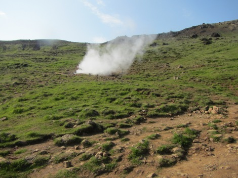 Geothermal steam rising from a vent, a common sight in the mountains around Hvegardi