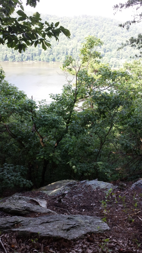 "A view of the Susquehanna from ""Kelly's Run"" in Holtwood Nature Preserve"