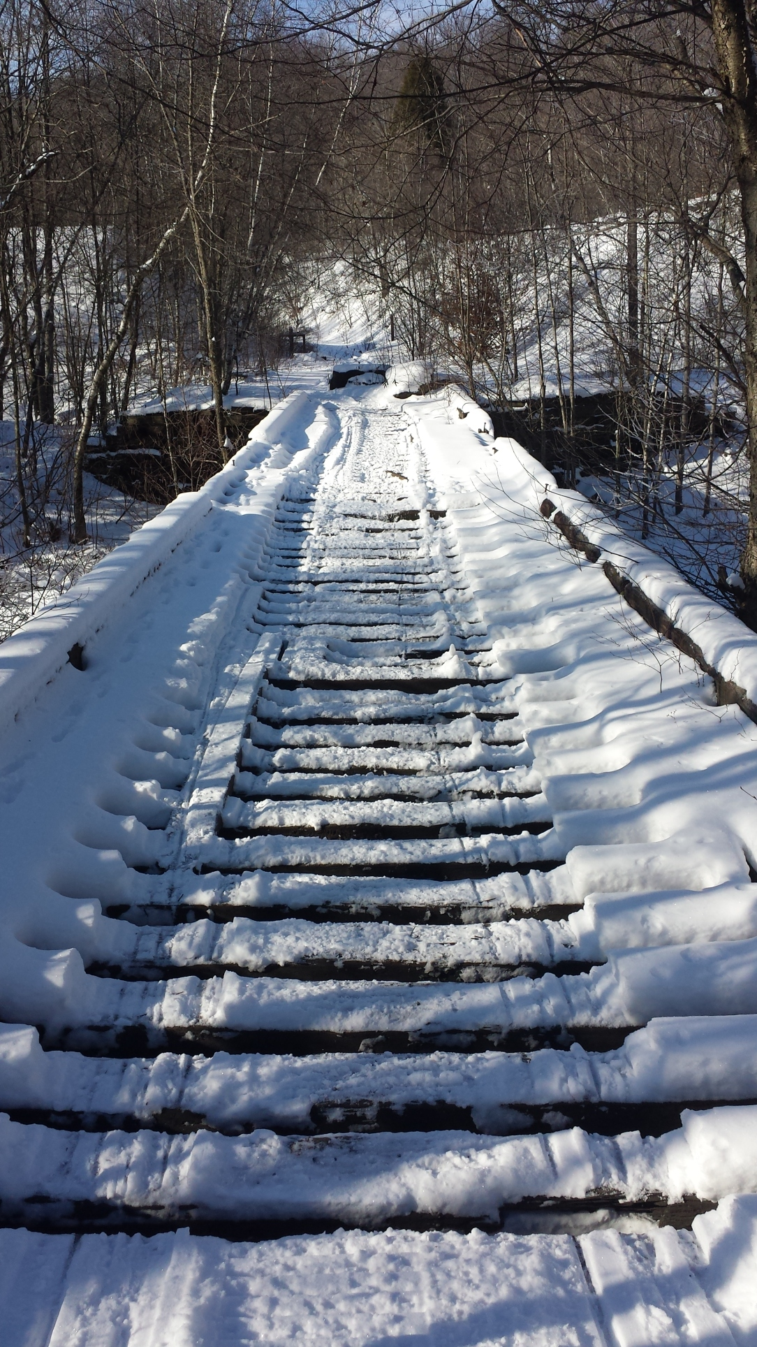 Courtesy of NEPA Rail-Trails.