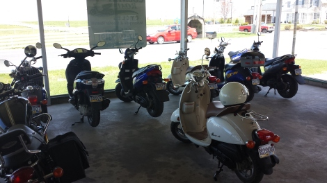 You could rent scooters and motorcycles, which would be fun if they didn't scare me. Don't judge.