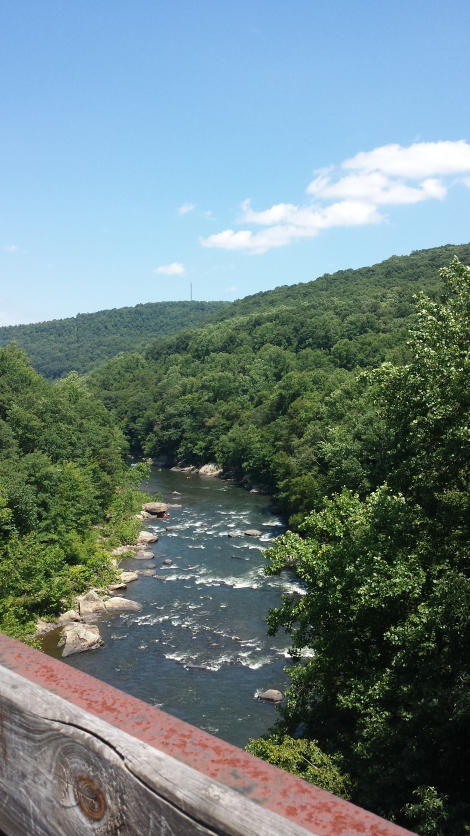 An aerial view of a portion of Ohiopyle State Park.