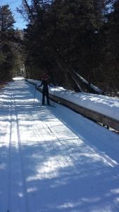 Skiing through the swamp-notice the raised walkway to my sister's right-where we were skiing would normally be wetlands. She actually has an irrational fear or swamps, so this was a big moment for her.