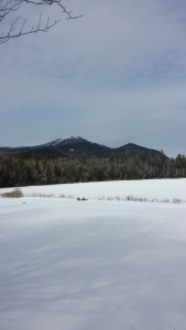 View of Whiteface across Conner's pond.