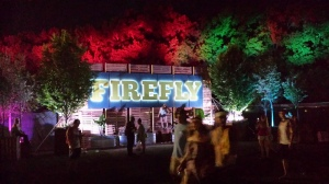 Firefly by night.