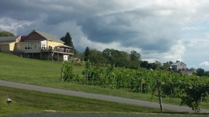 Finger Lake wineries.
